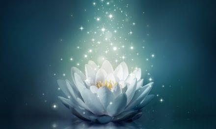 Meditation FAQs