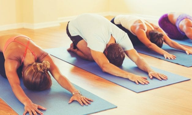 Schools of Yoga