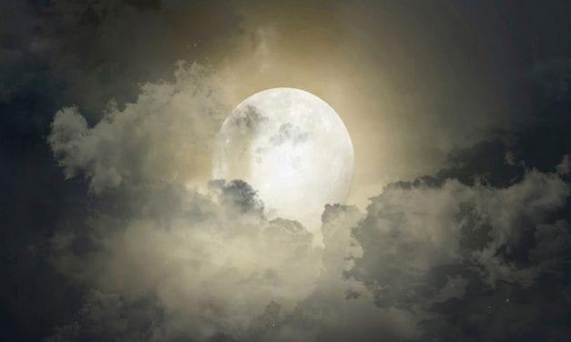 Zen Story: Steal the Moon