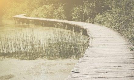 Zen Story: Perceptions