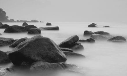 Zen Story: Wishful thinking