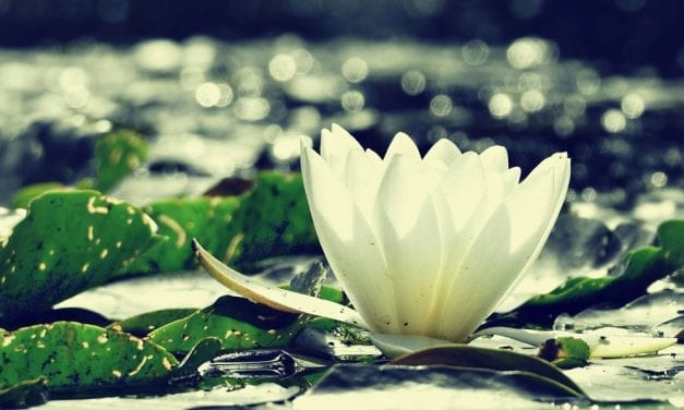 """5 Practices for Being """"In the World But Not Of the World"""""""