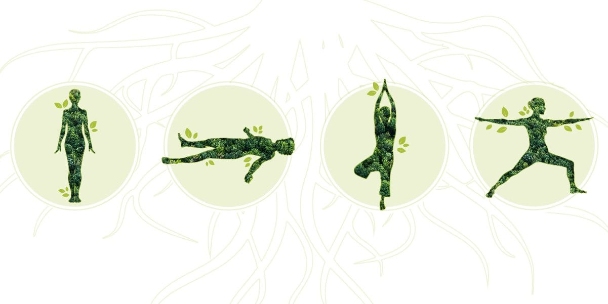 Yoga Poses to Ground You
