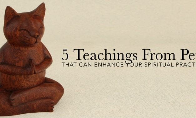 5 Teachings From Pets That Can Enhance Your Spiritual Practice